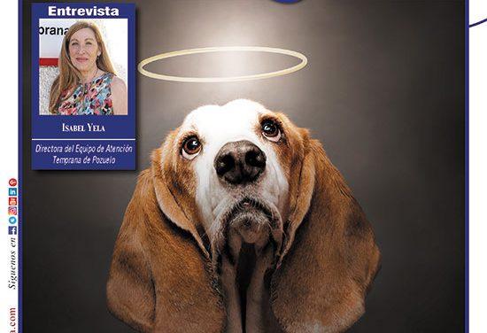 Ayer & hoy – Boadilla-Pozuelo – Revista Agosto 2018