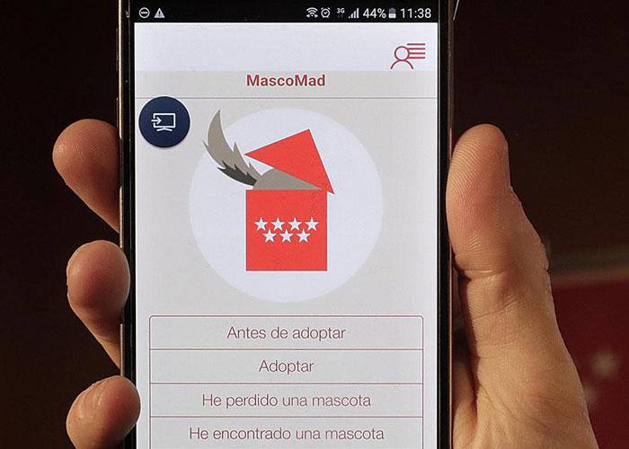 La Comunidad de Madrid anima a utilizar la app Mascomad para adoptar mascotas abandonadas y recuperar a las extraviadas
