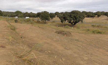 Comienza la construcción de 23 huertos urbanos dobles que estarán a disposición de los vecinos para su explotación