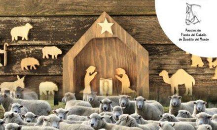 Las ovejas llegarán a Boadilla el próximo día 22 y formarán parte del tradicional Belén viviente