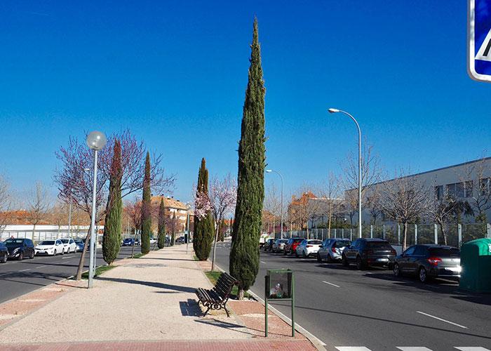 Renovación integral del alumbrado de Isabel de Farnesio y proyectos de mejora en otras zonas