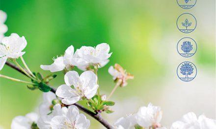 Pozuelo de Alarcón celebra este sábado el Día Mundial del Medio Ambiente