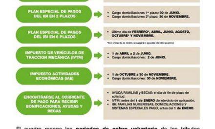 Publicado el calendario fiscal con los periodos de pago, fechas de cargo y plazos para solicitar bonificaciones