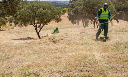 El Ayuntamiento de Boadilla recuerda a los propietarios de solares y terrenos la obligatoriedad de mantenerlos limpios y desbrozados para evitar incendios