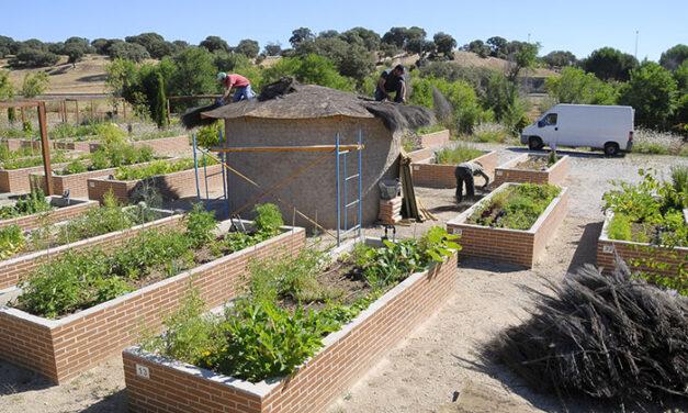 El Ayuntamiento de Boadilla realiza actuaciones de mejora en los huertos urbanos