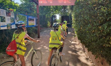 Más de 400 niños y jóvenes participan en Pozuelo en los campamentos municipales de verano, con restricciones