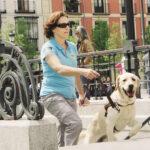 Fundación ONCE del Perro Guía