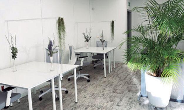 Womee:un centro que ofrece calidad para que puedas desarrollar tu trabajo