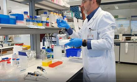 Científicos del Instituto de Investigación del Hospital 12 de Octubre i+12 descubren un nuevo mecanismo de transmisión del COVID-19 a través de las células del sistema inmune