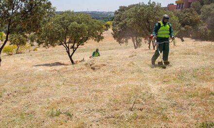 El Ayuntamiento de Boadilla recuerda la obligación de mantener limpios y desbrozados los solares y terrenos privados